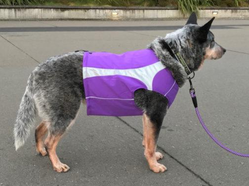 Polar Dog Vest lupine NZ