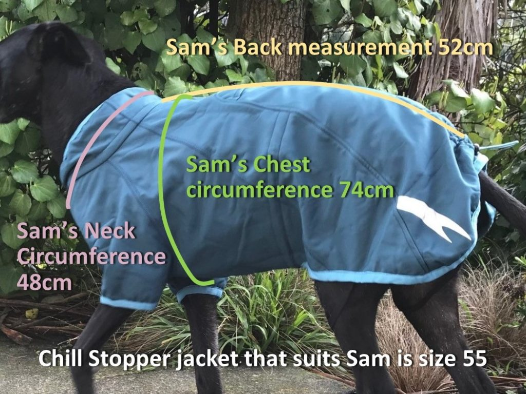 Chill Stopper measuring Sam