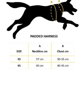 Hurtta Padded Harness