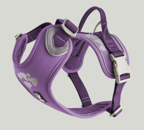 Weekend Warrior Harness currant NZ