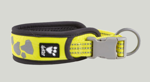 Weekend Warrior Collar neon lemon NZ
